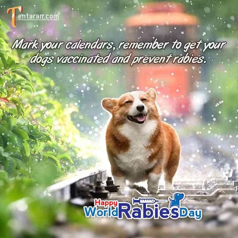 World rabies day 2020 poster