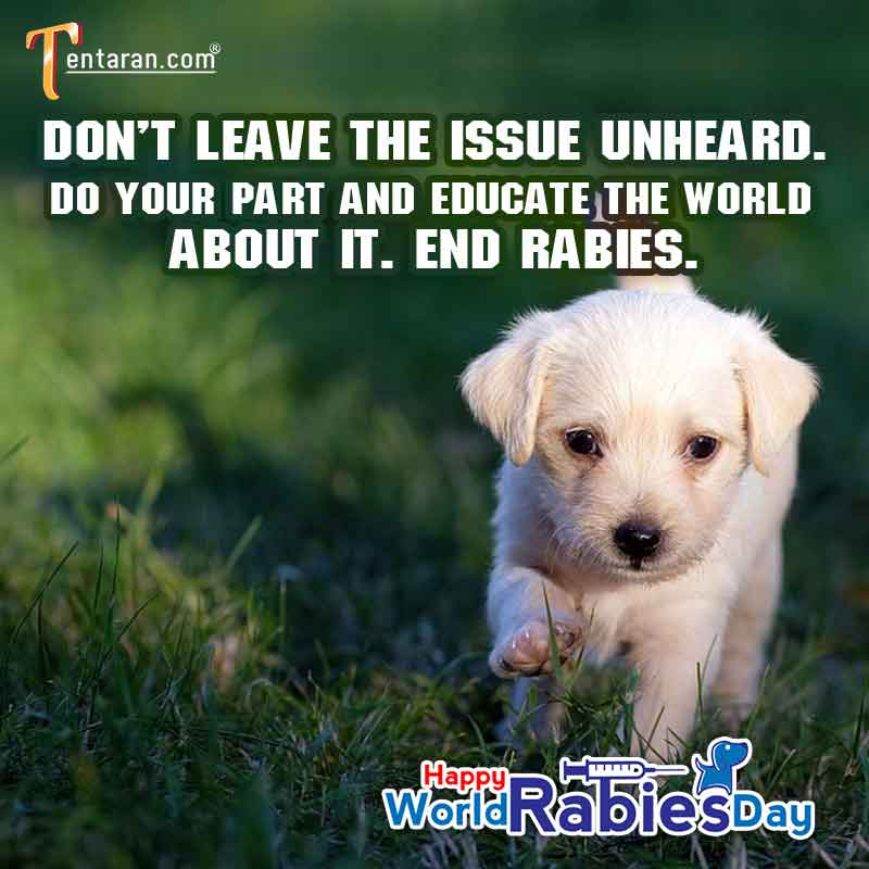 best World rabies day pictures