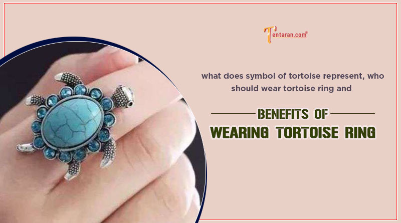 what does symbol of tortoise represent
