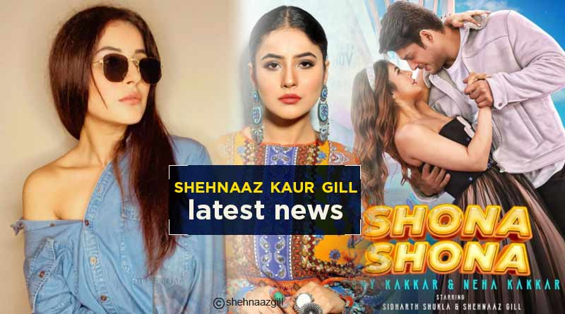 shehnaaz kaur gill latest news