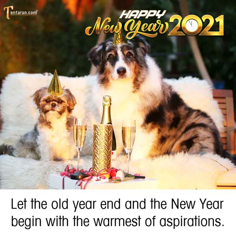 happy new year 2021 images5