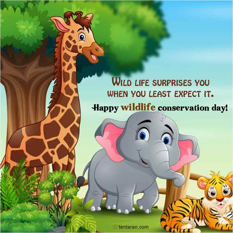 world wildlife conservation day images2