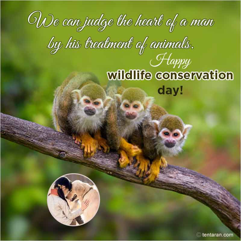world wildlife conservation day images4