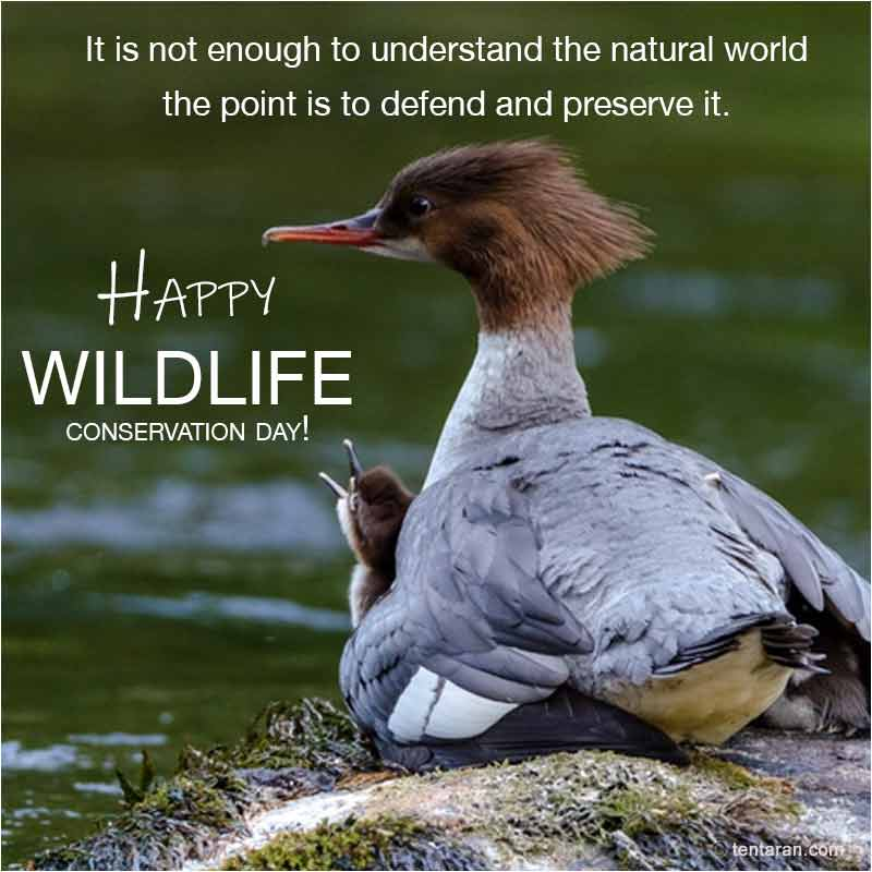 world wildlife conservation day images5