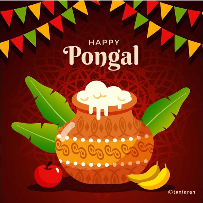 happy pongal images1