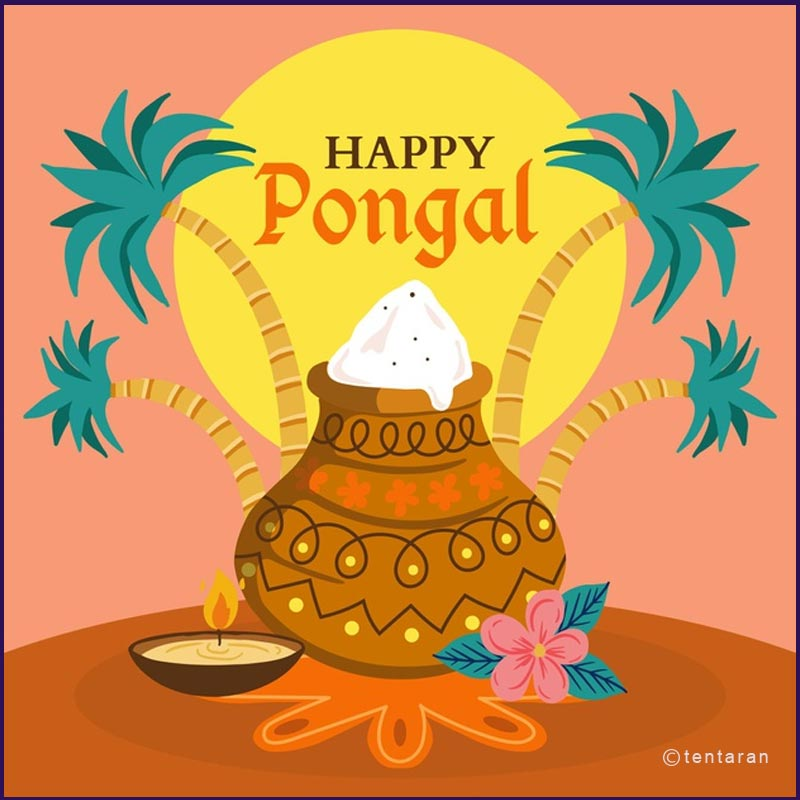 happy pongal images14