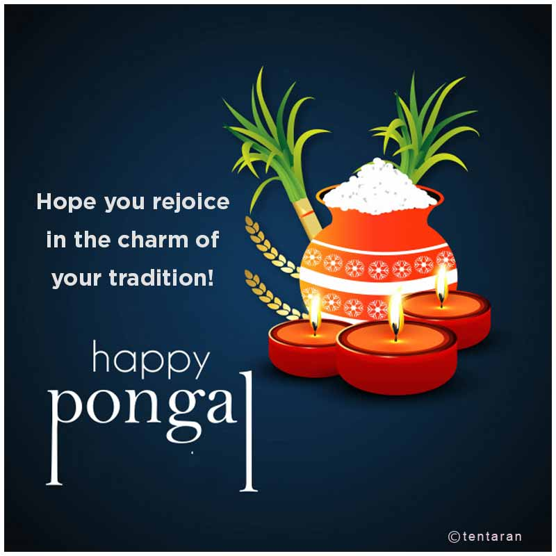 happy pongal images2