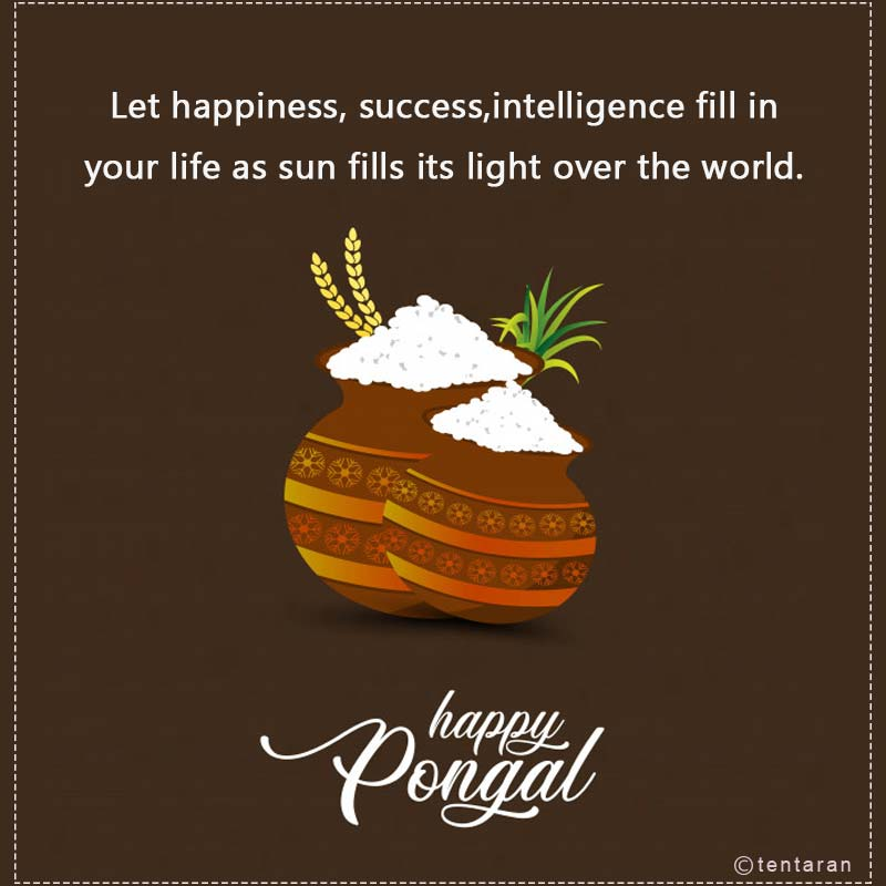 happy pongal images5
