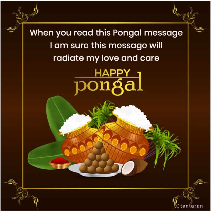 happy pongal images7
