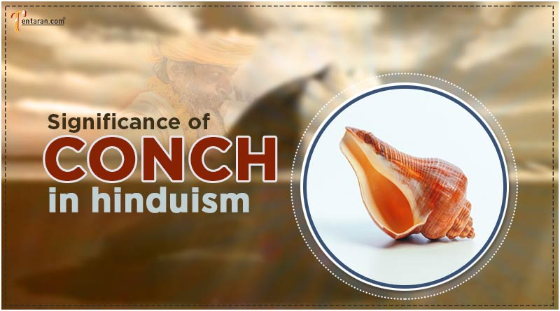 significance of conch in hinduism