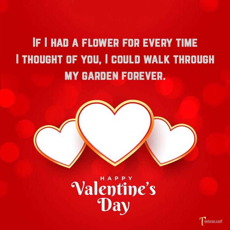 valentines day images19