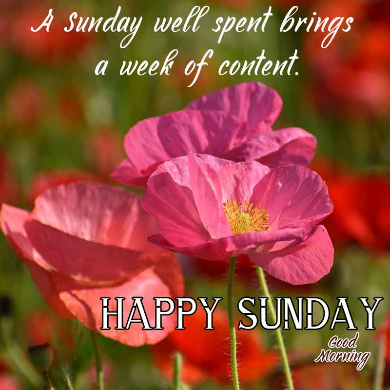 happy sunday quotes with images1